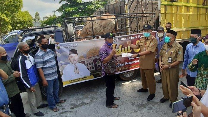 Jelang Hari Raya Idul Adha, 38 Sapi dari Gubernur Kalteng Disalurkan ke Kapuas