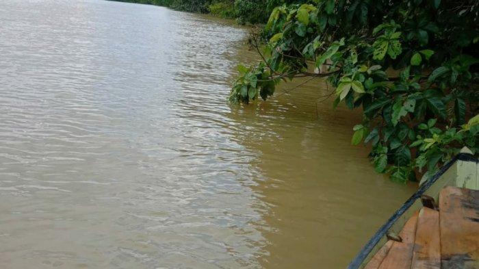 Dugaan Pencemaran Sungai Satui, Warga dan Nelayan Harap Ada Ketegasan Pemkab Tanbu