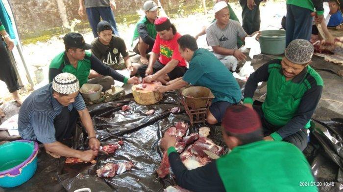 HPN Kalsel dan Lembaga Perekonomian NU Banjarbaru Sembelih 35 Ekor Sapi