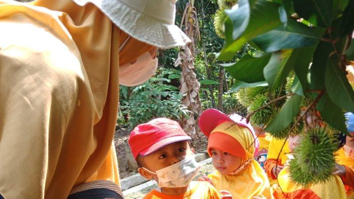 Senangnya Siswa PAUD Melihat Buah Bergelantungan di Pohon-pohon di Balai Benih Kalsel