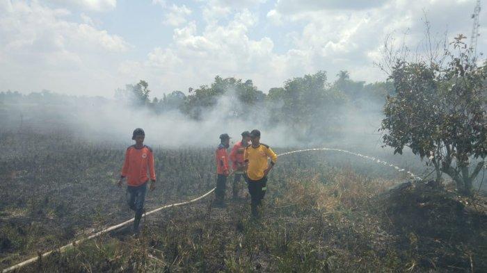 Api Bakar Lahan Satu Setengah Hektare di Palingkau Kapuas Murung, Pascakejadian Ditemukan Mayat