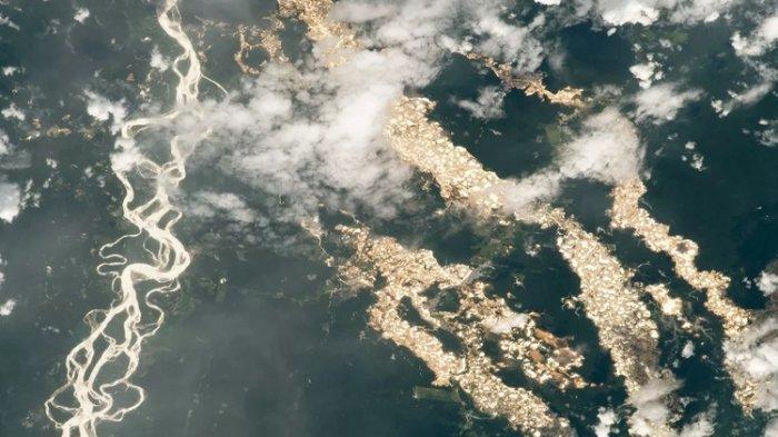 Ada Sungai Emas di Amazon, NASA Buktikan Fakta Ini dengan Foto dari Luar Angkasa