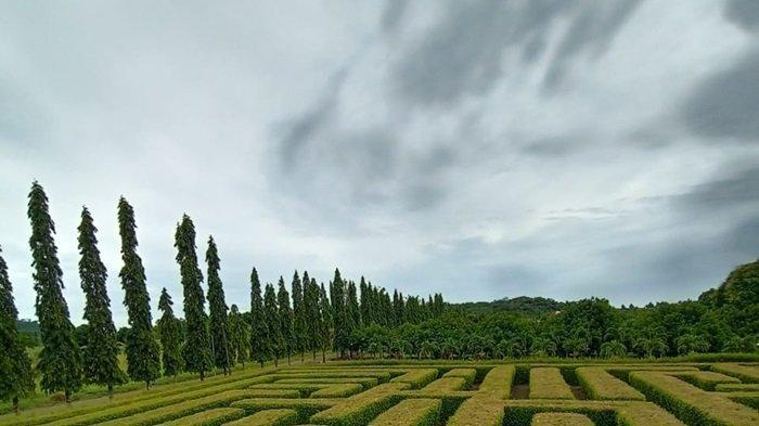 Taman Labirin di Desa Sungai Jelai Kecamatan Tambangulang Kabupaten Tanahlaut