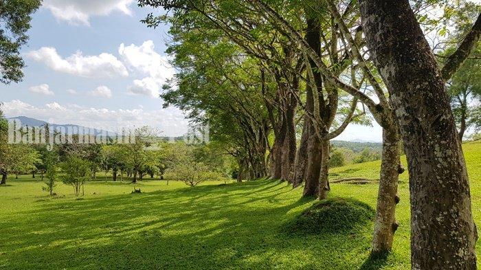 Wisata Kalsel, Sajikan Savana Menghijau Nan Luas, Begini Penampakan Taman Permana Tala