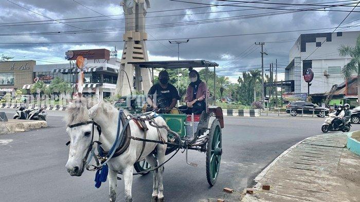 Wisata Kalsel, Yuk Naik Delman di Taman Van der Pijl Banjarbaru, Rute Mengelilingi Murjani