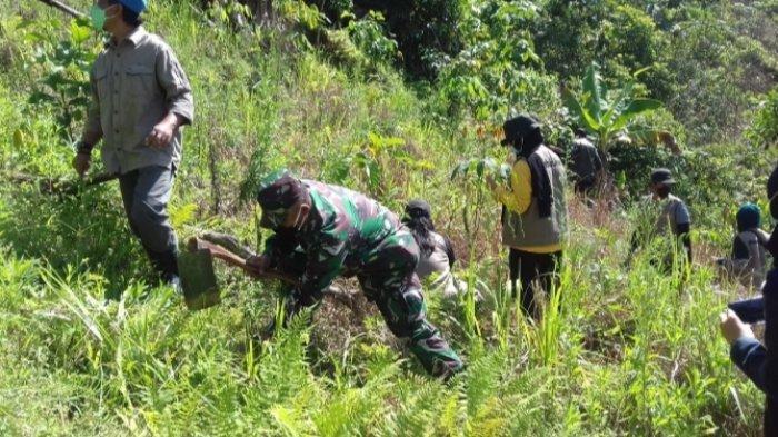 Anggota TNI, Polri, Dishut, Mahasiswa TanamPohon di Pegunungan Meratus Kabupaten HST