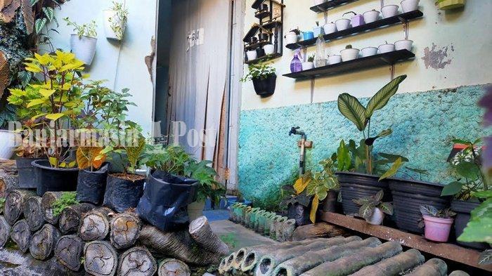 Bisnis Tanaman Hias sedang 'Layu', Begini Kata Penjual di Kota Banjarbaru