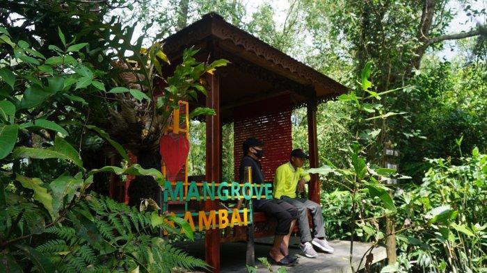 Wisata Kalsel, Menikmati Bentang Alam di Pulau Curiak Batola, Jika Beruntung Bisa Melihat Bekantan