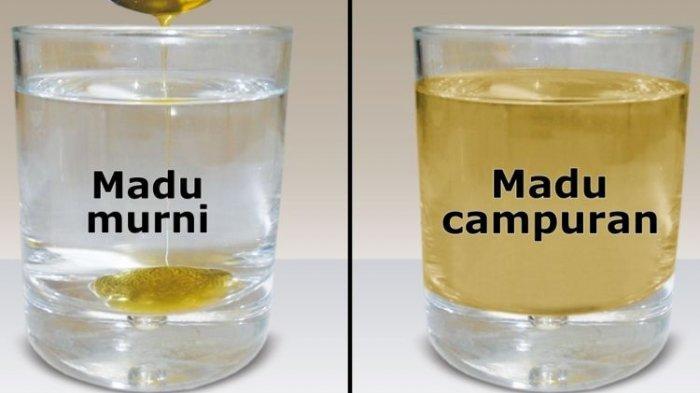 Tes madu asli dan campuran dengan air.