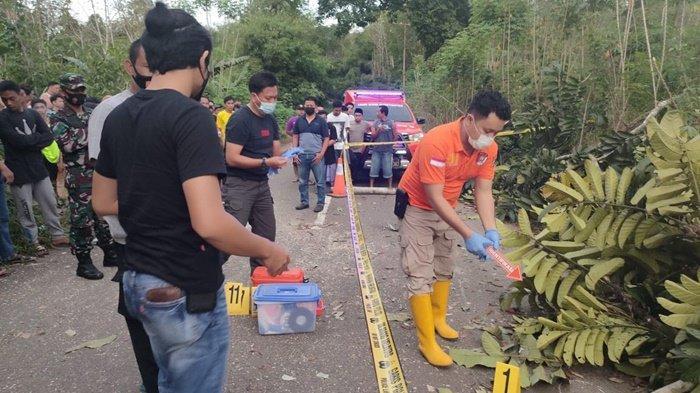 Warga Kalteng Tewas Kejatuhan Pohon yang Ditebang di Desa Bongkang Kabupaten Tabalong