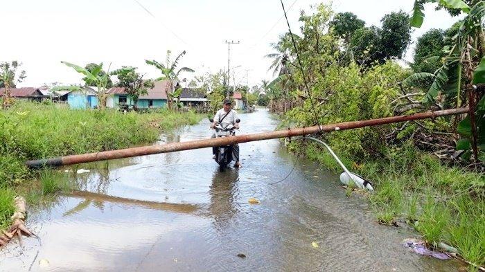 Tiang listrik, juga pohon, tumbang akibat terjangan puting beliung di Desa Akar Baru, Kecamatan Martapura Timur, Kabupaten Banjar, Provinsi Kalimantan Selatan, Kamis (11/3/2021) sekitar pukul 13.45 Wita.