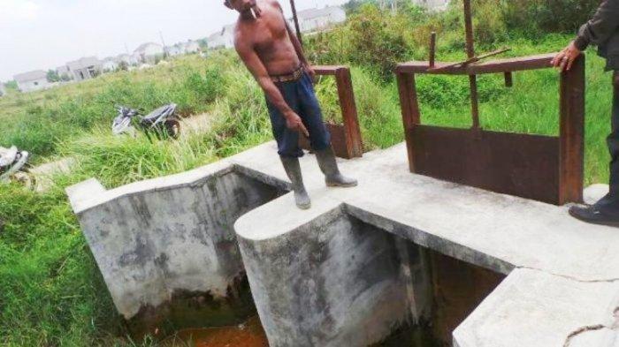 Sudah Ada Perbaikan Tanggul dan Pintu Air, Petani Tetap Belum Bisa Tanam, Ini Penyebabnya