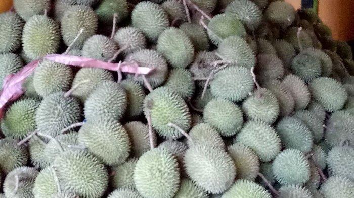 Haruyan Dayak HST Banjir Buah Durian, Saat Ini Beli Harganya Cuma Rp 15 Ribu Per Biji