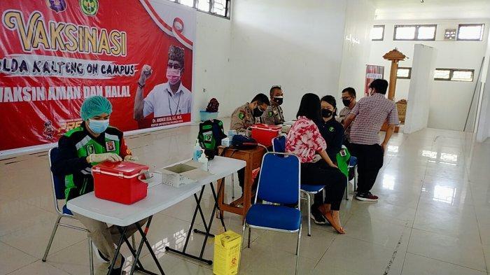 Wabah Corona Kalteng, 250 Mahasiswa Universitas Palangkaraya Ikuti Vaksinasi Covid-19 di Kampus