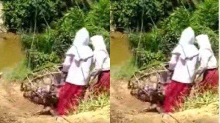 Fakta Viral di Medsos Tiga Bocah SD Bergelantungan Seberangi Sungai, Begini Kata Kepala Desa