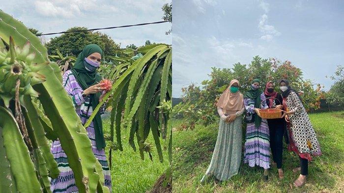Wisata Amanah Borneo Park, Istri Wali Kota Terpilih Banjarbaru Nikmati Asyiknya Wahana Petik Buah