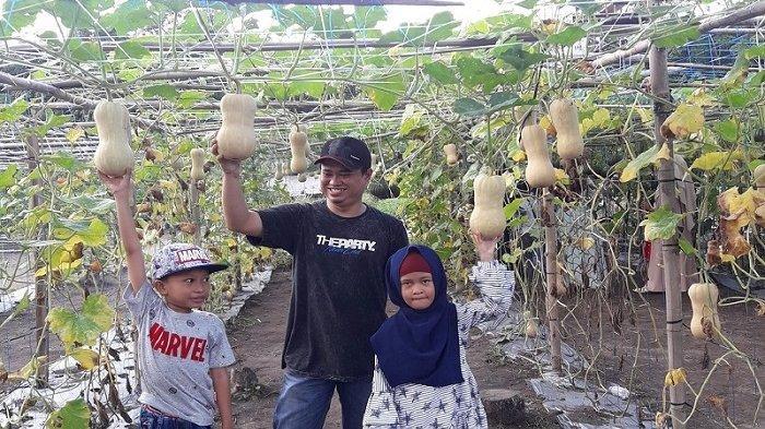 Desa Kambat Utara HST Dicanangkan Jadi Desa Agrowisata, Desain 5 Hektare Lahan