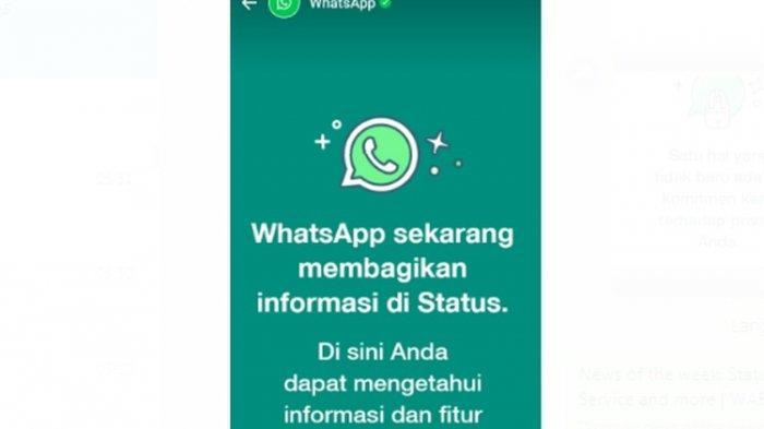 Status Resmi Whatsapp