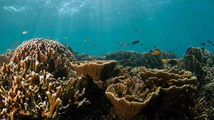 Wisata Kalsel, Saksikan Matahari Terbit dan Tenggelam di Pulau Samber Gelap Kotabaru