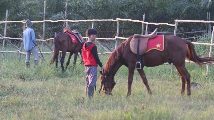 WisataKalsel, Belajar BerkudaTarifnya dari Puluhan Ribu Hingga Jutaan Rupiah