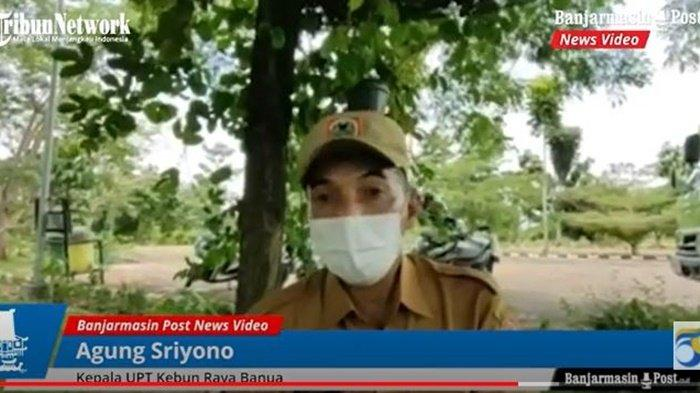 Kepala UPT Kebun Raya Banua, Agung Sriyono.