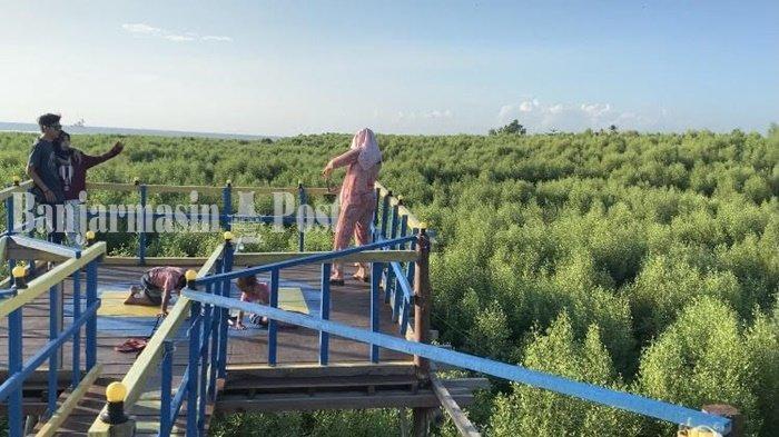 Wisata Kalsel Ekowisata Mangrove Pagatan Besar Kabupaten Tala Yang Eksotis Banjarmasin Post