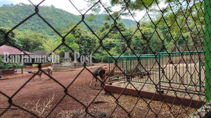 Wisata Kalsel, Penangkaran Rusa Hingga Madu Kelulut di Tahura Sultan Adam Kabupaten Banjar