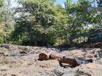 20200921_stan_susur-sungai-arus-alam-sungai-kembang-kecamatan-aranio-kabupaten-banjar-3.jpg