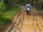 anggota-dprd-hsu-junaidi-melihat-kondisi-jalan-desa-pandawanan_20180329_195318.jpg