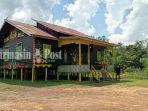 bangunan-balai-adat-dayak-maanyan-di-desa-warukin-tabalong-berdiri-kokoh-selasa-22062021.jpg