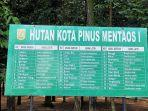 berdasarkan-papan-informasi-ditulis-di-hutan-kota-pinus-mentaos-ada-36-jenis-pohon-yang-ditanam.jpg