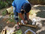 beri-makan-kelinci-di-taman-bakuang-desa-kandanganlama-kabupaten-tala-kalsel-15032021.jpg
