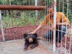 beruang-madu-ini-salah-satu-penghuni-baru-tahura-mandiangin-yang-diberi-nama-rizal-borneo_20180316_185826.jpg
