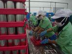buruh-di-pabrik-pengalengan-ikan-cv-pasific-harvest_20180401_170514.jpg