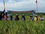 desa-karang-mulya-kecamatan-kusan-hulu-kabupaten-tanahbumbu_20180223_115541.jpg