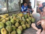 durian-menumpuk-di-teras-rumah-udi-seorang-pengumpul-di-desa-biih-karangintan_20170117_225046.jpg