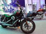 dyna-low-rider-kiri_20160205_101025.jpg