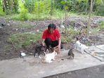 fahrurrazin-saat-memberi-makan-kucing-jalanan.jpg