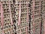 harga-telur-mengalami-penurunan-17092021-17092021-117092021.jpg