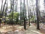 hutan-pinus-mentaos-banjarbaru-01.jpg