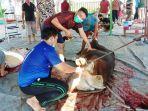 idul-adha-2021-pemotongan-hewan-kurban-ldii-kalsel-selasa-20072021.jpg