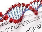 ilustrasi-pengurutan-genom-genome-sequencing-virus-corona.jpg