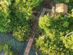 inilah-salah-satu-fasilitas-di-kawasan-hutan-bekantan-di-panjaratan22222.jpg