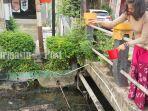 joice-berupaya-membersihkan-limbah-yang-mencemari-air-sungai-banjarmasin-senin-2772020.jpg