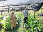 jumaidi-dan-nispi-di-laboratorium-kultur-jaringan-dinas-tanaman-pangan-dan-hortikultura-banjar.jpg