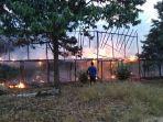 kandang-ayam-di-desa-pandansari-lumat-terbakar.jpg