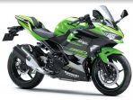 kawasaki-kelas-sport-250cc.jpg