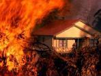 kebakaran-di-australia_20151119_160512.jpg