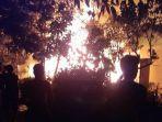 kebakaran-terusan-kapuas-kalteng.jpg