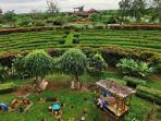 kebun-raya-banua-menjadi-salah-satu-areal-hijau.jpg